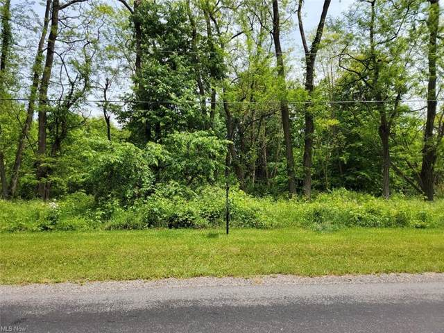 V/L Udall Road, Hiram, OH 44234 (MLS #4283782) :: The Holly Ritchie Team