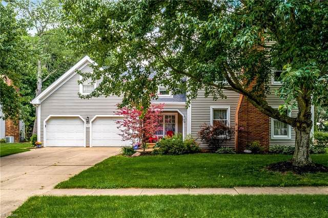 1061 Buchholz Drive, Wooster, OH 44691 (MLS #4284789) :: The Holly Ritchie Team