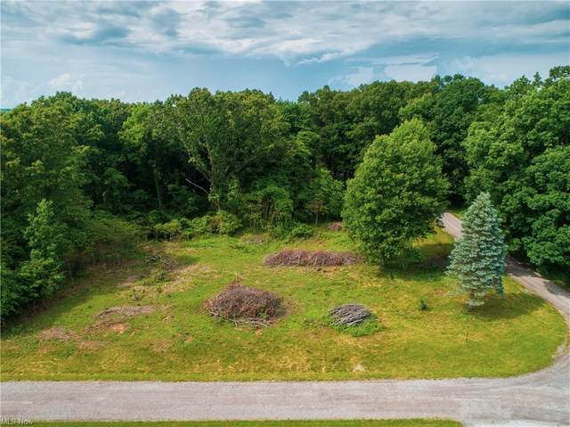 86195 Sandhill Tr 176A, Hopedale, OH 43976 (MLS #4286745) :: The Jess Nader Team | REMAX CROSSROADS