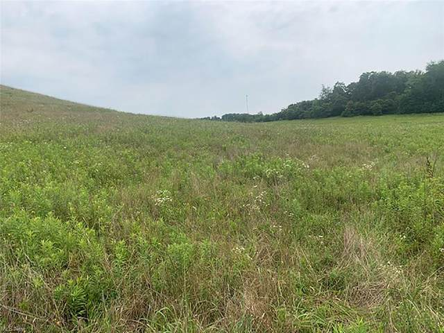 10934 State Route 164, Lisbon, OH 44432 (MLS #4288807) :: TG Real Estate