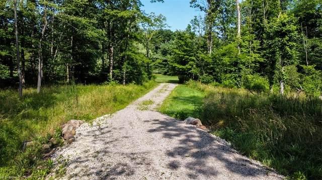 2988 Pine Hill Drive, Medina, OH 44256 (MLS #4293983) :: Tammy Grogan and Associates at Keller Williams Chervenic Realty