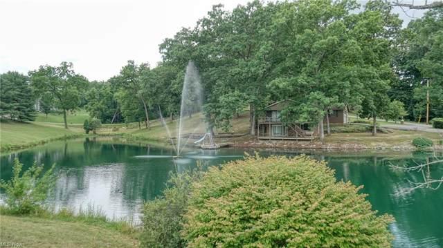 310 Lake Vista Drive, Zanesville, OH 43701 (MLS #4298649) :: The Art of Real Estate