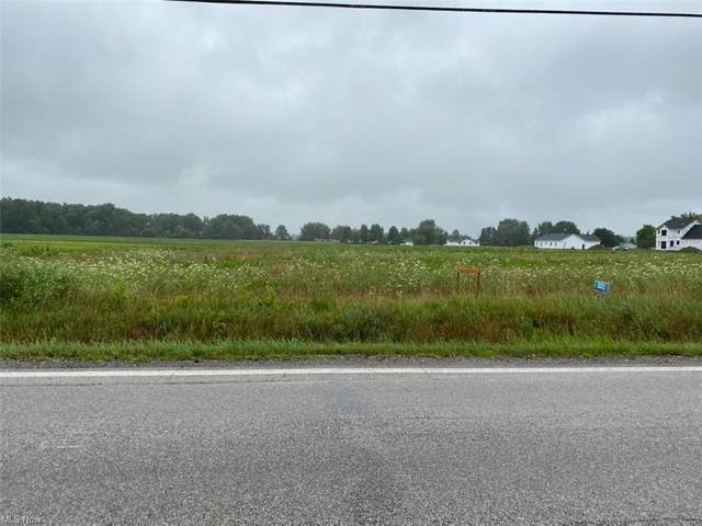 020 State Route 303, Lagrange, OH 44050 (MLS #4299322) :: TG Real Estate