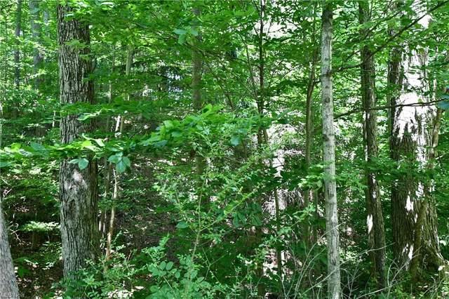 150 Miles Road, Chagrin Falls, OH 44022 (MLS #4301021) :: TG Real Estate