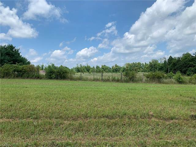 0 Euga Rd, Newcomerstown, OH 43832 (MLS #4301799) :: Tammy Grogan and Associates at Keller Williams Chervenic Realty