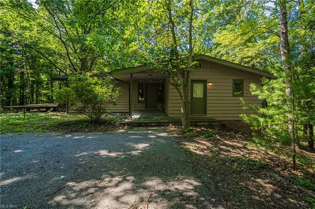 6484 Auburn Road, Painesville, OH 44077 (MLS #4302432) :: TG Real Estate