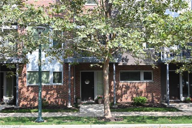 1259 W 75th Street D-1259, Cleveland, OH 44102 (MLS #4304906) :: TG Real Estate