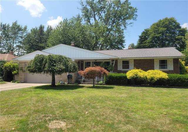 1842 Dunellon Drive, Lyndhurst, OH 44124 (MLS #4307091) :: Simply Better Realty