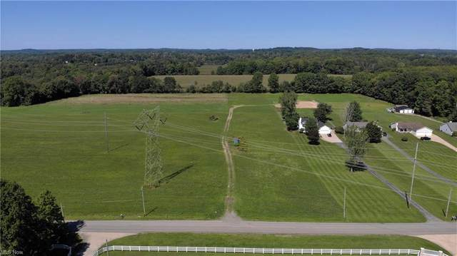 Dawley Road, Ravenna, OH 44266 (MLS #4313399) :: TG Real Estate