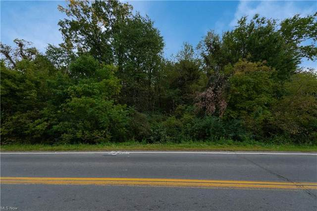 Mill Street SW, Canton, OH 44706 (MLS #4321809) :: Select Properties Realty