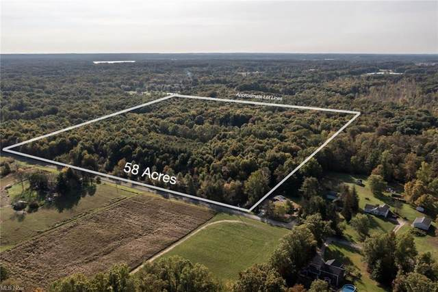 Yale Lot 73, Deerfield, OH 44411 (MLS #4323050) :: The Holly Ritchie Team