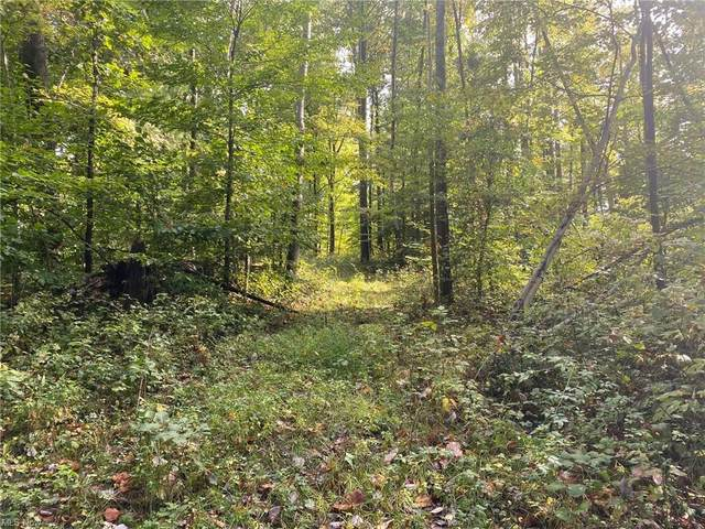 Deluxe And Amsterdam Road, Bowerston, OH 44695 (MLS #4326603) :: Simply Better Realty