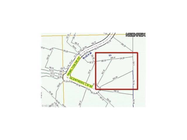 S/L 136 Glentrool Ln, Richfield, OH 44286 (MLS #3367501) :: Tammy Grogan and Associates at Cutler Real Estate