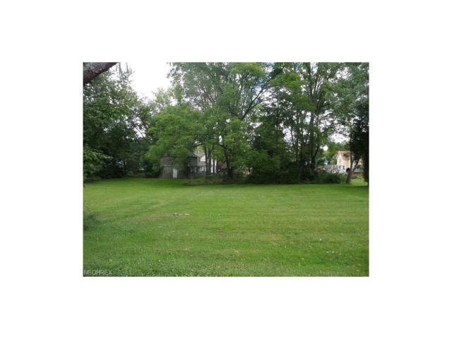 Highland St, Garrettsville, OH 44231 (MLS #3654506) :: Keller Williams Chervenic Realty