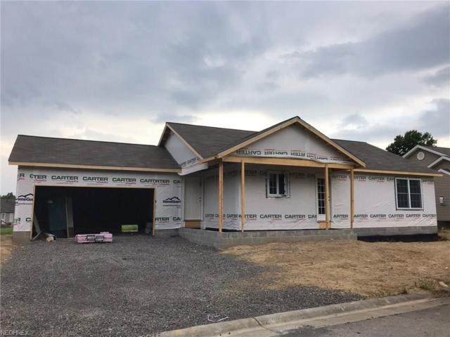 603 S Raccoon Rd #58, Youngstown, OH 44515 (MLS #3675175) :: RE/MAX Trends Realty