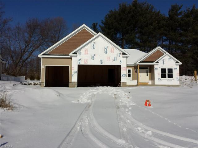 571 Silver Creek Dr, Doylestown, OH 44230 (MLS #3724170) :: Tammy Grogan and Associates at Cutler Real Estate
