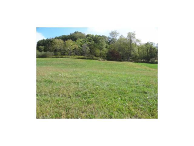 469 Deer Park Dr, New Philadelphia, OH 44683 (MLS #3751605) :: Tammy Grogan and Associates at Cutler Real Estate