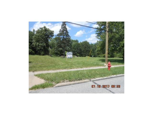 19170 Bagley Rd, Middleburg Heights, OH 44130 (MLS #3853973) :: Tammy Grogan and Associates at Cutler Real Estate