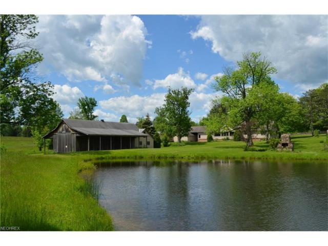 15113 Munn, Newbury, OH 44065 (MLS #3884962) :: The Crockett Team, Howard Hanna