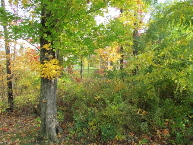 1605 N Shore Dr, Painesville, OH 44077 (MLS #3897229) :: Keller Williams Chervenic Realty