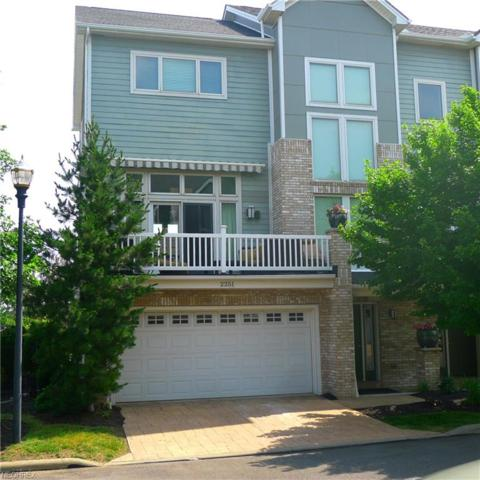 2251 City View Dr, Cleveland, OH 44113 (MLS #3912594) :: The Crockett Team, Howard Hanna