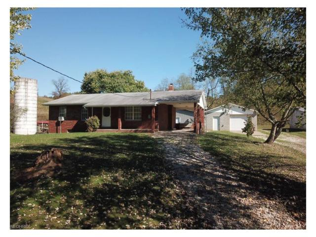 379 S Pleasant Hill Rd, Belleville, WV 26133 (MLS #3947085) :: Tammy Grogan and Associates at Cutler Real Estate