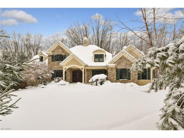 106 Ashleigh Dr, Chagrin Falls, OH 44022 (MLS #3950293) :: Tammy Grogan and Associates at Cutler Real Estate