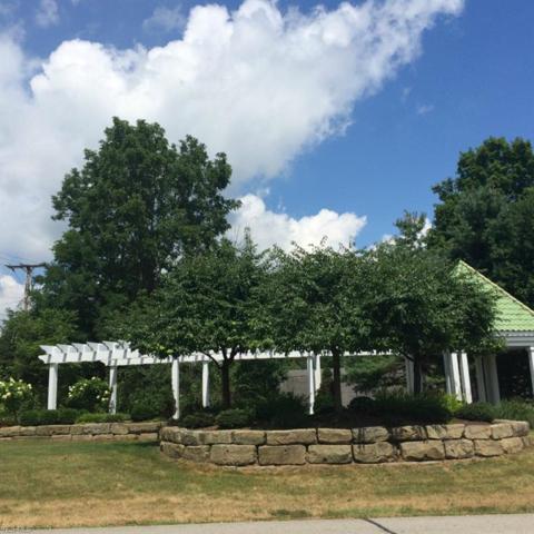 Lot #85 Medina Line Road, Bath, OH 44333 (MLS #3969103) :: RE/MAX Valley Real Estate