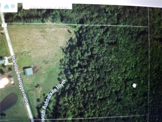 v/l 25 acres Stanhope Kelloggsville Rd, Dorset, OH 44032 (MLS #3969882) :: PERNUS & DRENIK Team