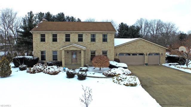 116 Hickory Cir, Cortland, OH 44410 (MLS #3971429) :: Tammy Grogan and Associates at Cutler Real Estate