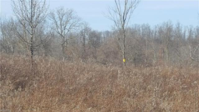 Easton Rd, Salesville, OH 43778 (MLS #3971704) :: RE/MAX Valley Real Estate