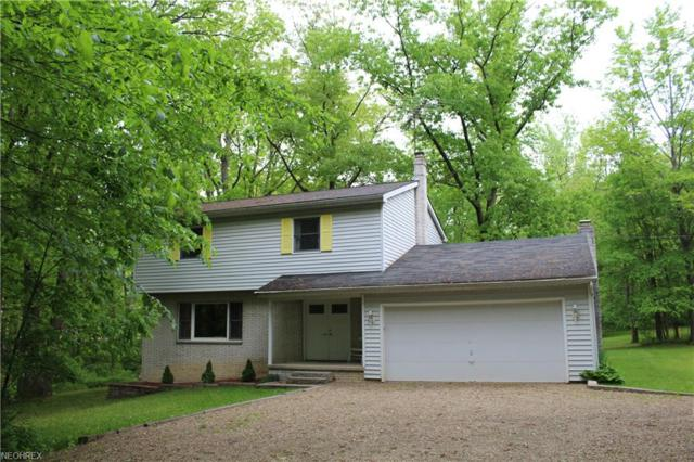 2897 Brush Rd, Richfield, OH 44286 (MLS #3979001) :: PERNUS & DRENIK Team