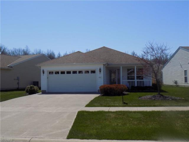 4719 Hawk Ln, Lorain, OH 44053 (MLS #3982940) :: The Crockett Team, Howard Hanna