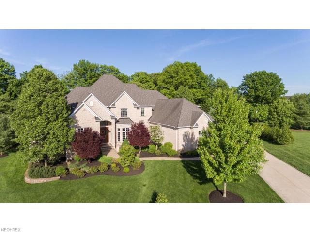 3741 Braemar Dr, Richfield, OH 44286 (MLS #3983231) :: Tammy Grogan and Associates at Cutler Real Estate