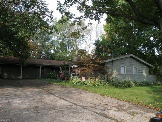 1080 Wadsworth Rd, Medina, OH 44256 (MLS #3983577) :: The Crockett Team, Howard Hanna
