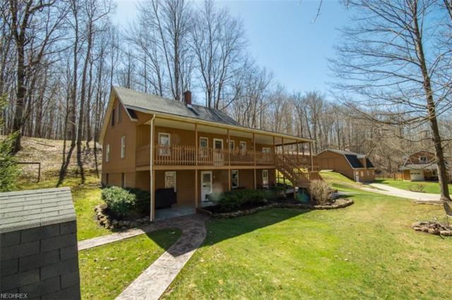 16721 Swine Creek Rd, Middlefield, OH 44062 (MLS #3989464) :: Tammy Grogan and Associates at Cutler Real Estate