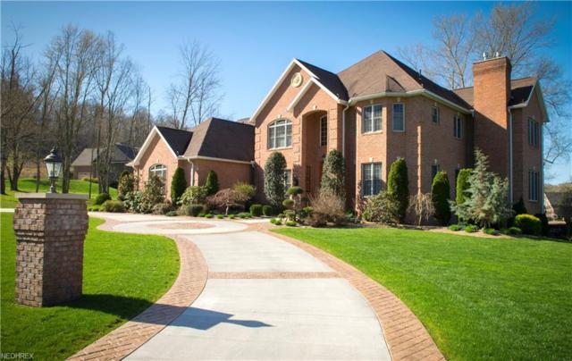 57 Alexander Dr, Williamstown, WV 26187 (MLS #3991471) :: Tammy Grogan and Associates at Cutler Real Estate