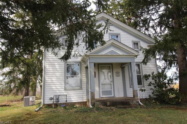 10730 Music St, Newbury, OH 44065 (MLS #3992805) :: RE/MAX Trends Realty