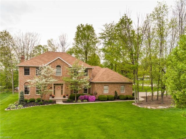 334 Carol Way, Wadsworth, OH 44281 (MLS #3996053) :: RE/MAX Trends Realty