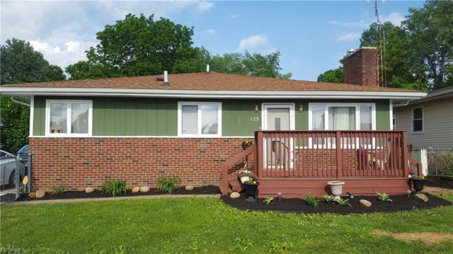 125 Kreiner Ave, Akron, OH 44312 (MLS #3996440) :: RE/MAX Trends Realty