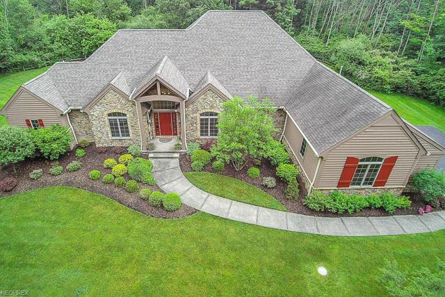 15685 Gamekeepers Trl, Novelty, OH 44072 (MLS #4007398) :: PERNUS & DRENIK Team