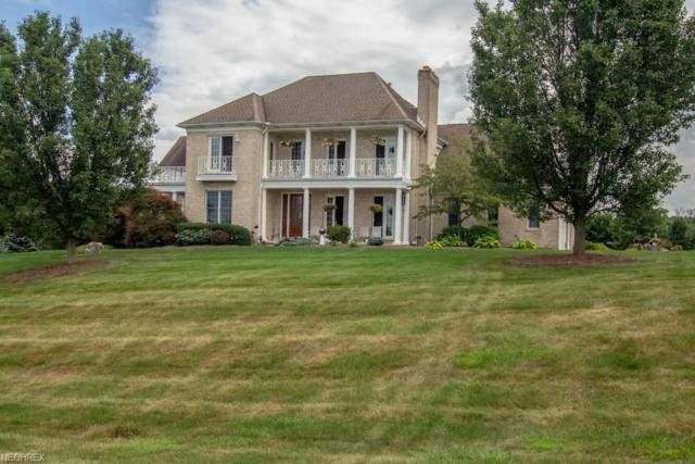 1552 Lantern Hill Dr, Wadsworth, OH 44281 (MLS #4013516) :: The Crockett Team, Howard Hanna