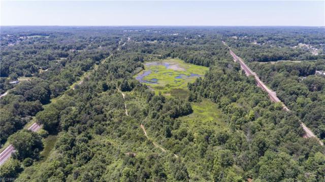 V/L Emerald Lake Pky, Ravenna, OH 44266 (MLS #4013920) :: The Crockett Team, Howard Hanna