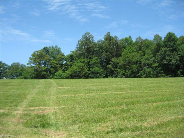 00 Rt 5, Grantsville, WV 26147 (MLS #4015716) :: RE/MAX Valley Real Estate