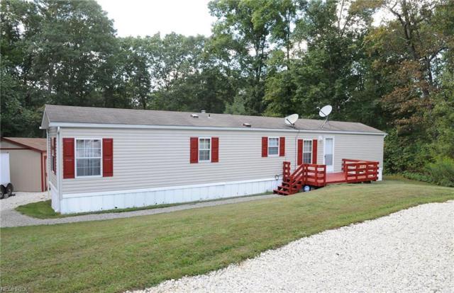60391 Plywood Rd, Byesville, OH 43723 (MLS #4035194) :: PERNUS & DRENIK Team