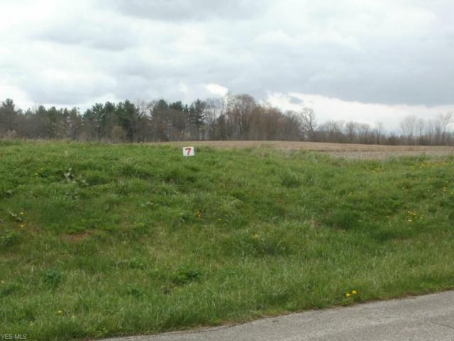 Wheeler Road, Garrettsville, OH 44231 (MLS #4042487) :: RE/MAX Valley Real Estate
