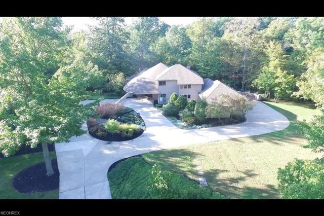 9024 Regency Woods Dr, Kirtland, OH 44094 (MLS #4042821) :: The Crockett Team, Howard Hanna