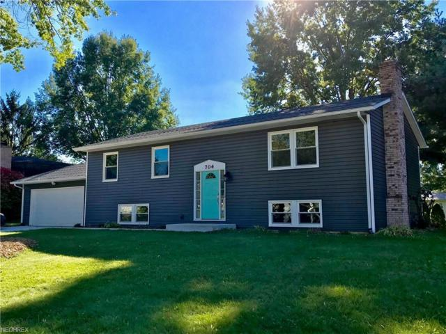 704 Dan Ave, Canal Fulton, OH 44614 (MLS #4047363) :: RE/MAX Trends Realty