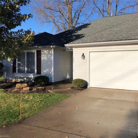 204 Villa East Dr #2, Fairport Harbor, OH 44077 (MLS #4054527) :: RE/MAX Edge Realty
