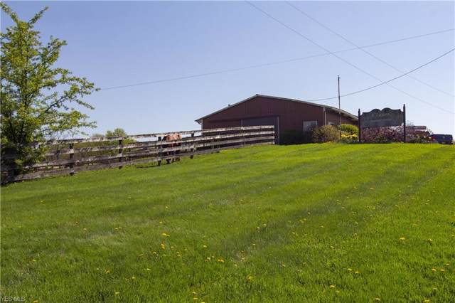 6259 Ryan Road, Medina, OH 44256 (MLS #4061271) :: The Crockett Team, Howard Hanna